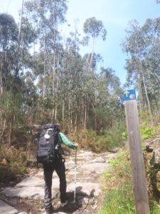 Wanderschuhe- Pilgern auf dem Jakobsweg