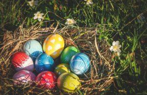 Bunte Ostereier in einem Frühlingsnest